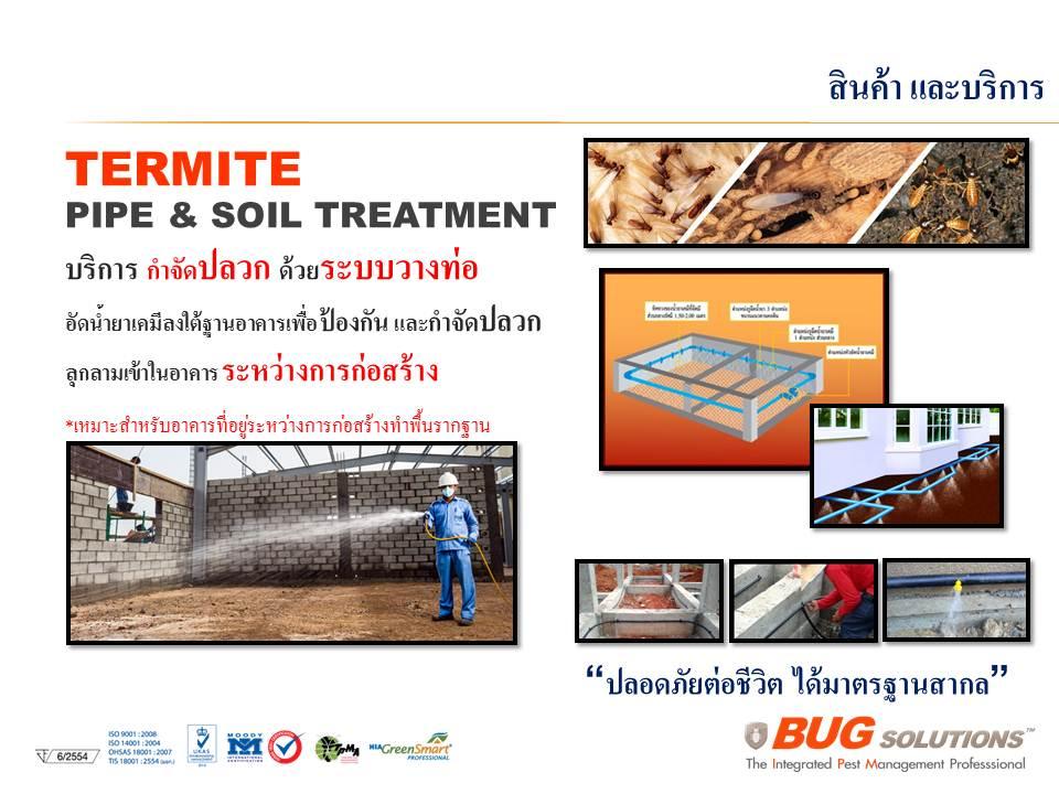 Bug Solutions General Pest Control Bug Solutions กำจัด